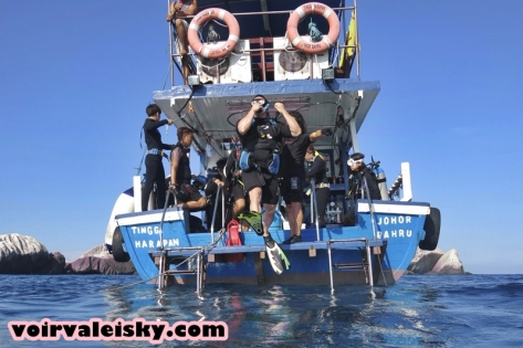 diving 59 (1)